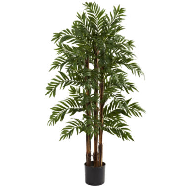 jcpenney.com | 4' Parlour Palm Tree