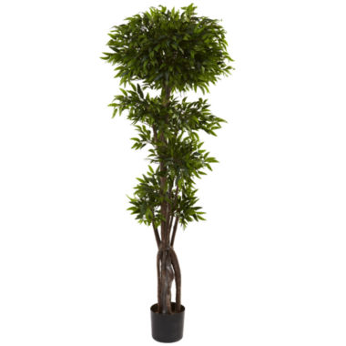 jcpenney.com | Nearly Natural 5-ft. Ruscus Tree