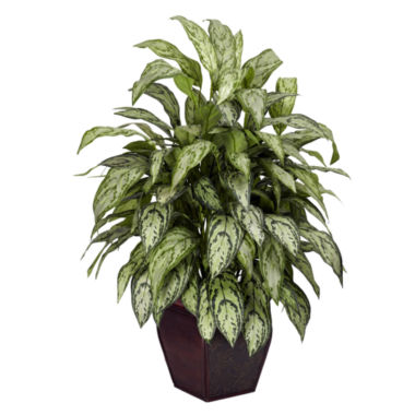 jcpenney.com | Nearly Natural Silver Queen With Decorative Planter Silk Plant