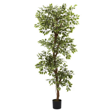 jcpenney.com | Nearly Natural 6-ft. Variegated Ficus Tree