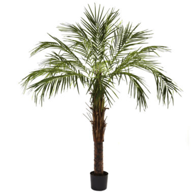 jcpenney.com | Nearly Natural 6-ft. Robellini Palm Tree