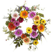 "26"" African Sunflower Wreath"