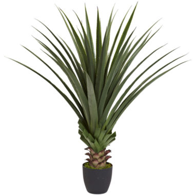 jcpenney.com | 4' Spiked Agave Plant