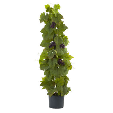 "jcpenney.com | 40"" Grape Leaf Deluxe Climbing Plant"