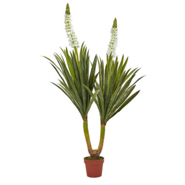 "jcpenney.com | 57"" Flowering Yucca Plant"