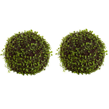 "jcpenney.com | Nearly Natural 9"" Set of 2 Mohlenbechia Ball"