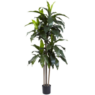 jcpenney.com | Nearly Natural 5-ft. Dracaena Plant UV-Resistant Indoor/Outdoor