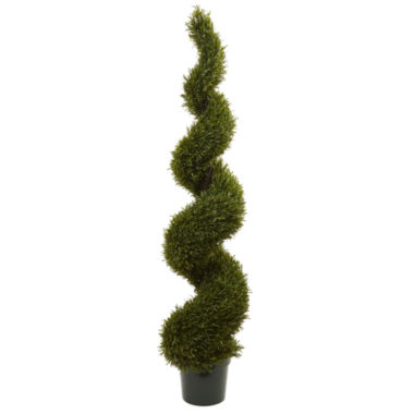 jcpenney.com | 6' Rosemary Spiral Tree Indoor/Outdoor