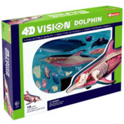 4D-Vision Dolphin Anatomy Model