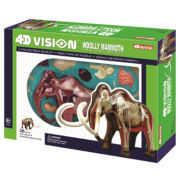 4D-Vision Woolly Mammoth Anatomy Model