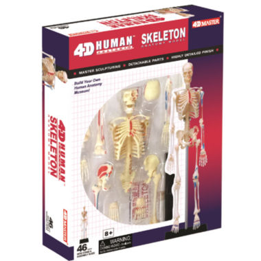 jcpenney.com | 4D-Human Skeleton Anatomy Model