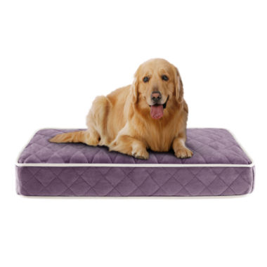 jcpenney.com | Sleep Philosophy Tavis Quilted Memory Foam Orthopedic Napper 44X35