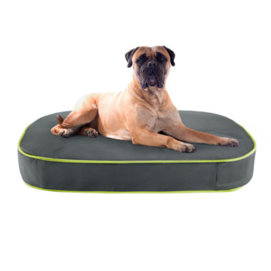 "jcpenney.com | Track & Tail Gunner 40x30"" Oval Pet Napper"