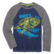 Arizona Long-Sleeve Graphic Raglan Tee - Boys 8-20 and Husky