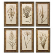 Set of 6 Wheatgrass Wall Art