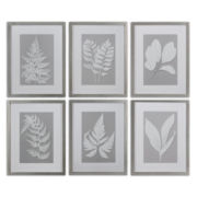 Set of 6 Moonlight Ferns Wall Art