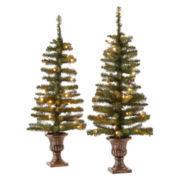 Set of 2 3½' Topiary Trees