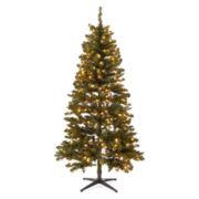6½' Pre-lit Dakota Pine Tree