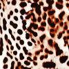 Reetah Cheetah