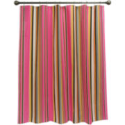 jcp home™ Collegiate Stripe Shower Curtain