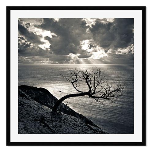 Dead Tree Sunset Framed Print