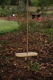 Classic Maple Wood Swing Disck Swing Set