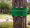 Tree Huggerz Swing Set
