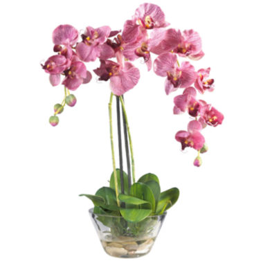 jcpenney.com | Nearly Natural Phalaenopsis With Glass Vase Silk Flower Arrangement