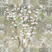 PTM Images™ Pear Blossom Canvas Wall Art