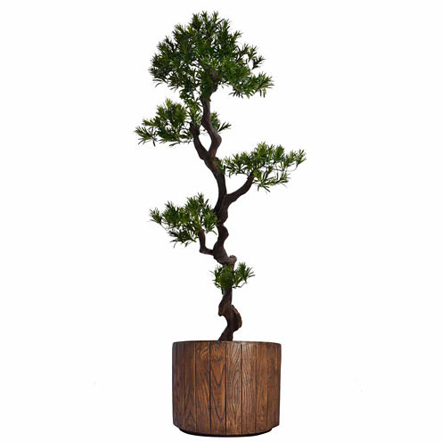 Laura Ashley 53 Inch Tall Yucca Tree In Faux-WoodPlanter