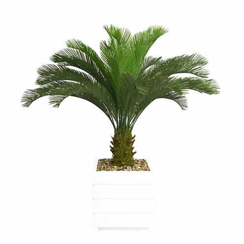 Laura Ashley 54 Inch Tall Cycas Palm Tree In 14 Inch Fiberstone Planter