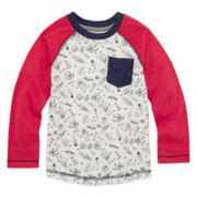 Arizona Long-Sleeve Printed Raglan Tee - Toddler Boys 2t-5t