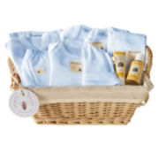Burt's Bees Baby™ 10-pc. Welcome Home Basket - Sky