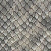 Blk Grey Snake