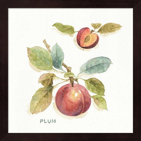 Orchard Bloom IV Framed Wall Art