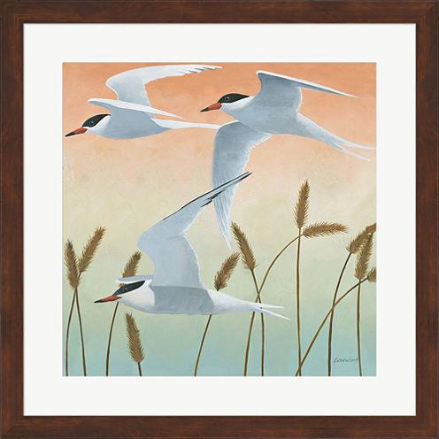 Free As A Bird II Framed Print Wall Art