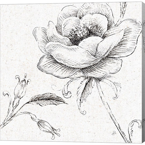 Blossom Sketches II Gallery Wrapped Canvas Wall Art On Deep Stretch Bars