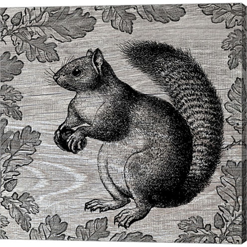 Squirrel I Gallery Wrapped Canvas Wall Art On DeepStretch Bars