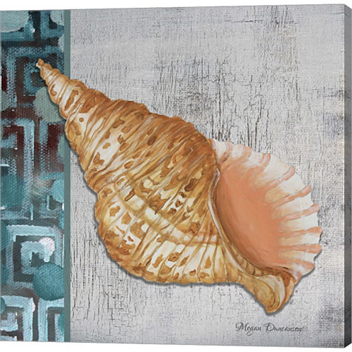 Spotted Conch Seashell Gallery Wrapped Canvas WallArt On Deep Stretch Bars