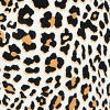 Leopard Baby