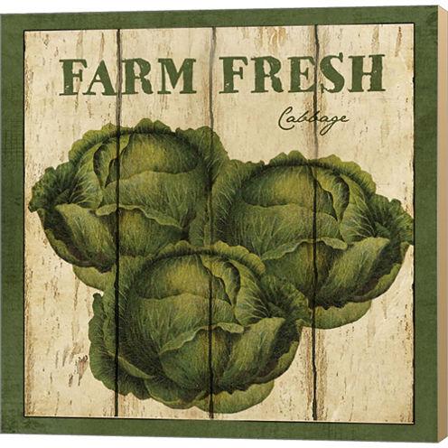 Farm Fresh Cabbage Gallery Wrapped Canvas Wall ArtOn Deep Stretch Bars