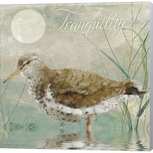 Sand Piper II Gallery Wrapped Canvas Wall Art On Deep Stretch Bars
