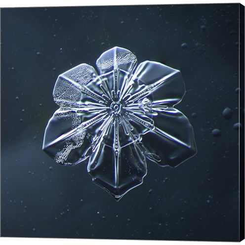 Snowflake 009.2.9.2014 Gallery Wrapped Canvas WallArt On Deep Stretch Bars