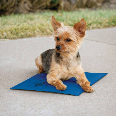 jcpenney.com | K & H Manufacturing Coolin' Pet Pad