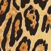 Lasting Leopard