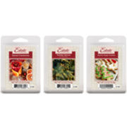 Estate™ Set of 3 Holiday Trio Wax Melts