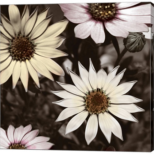 Hint Of Spring I Gallery Wrapped Canvas Wall Art On Deep Stretch Bars