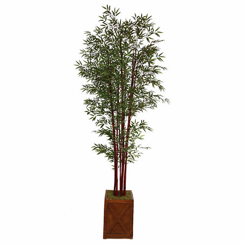 """Laura Ashley 101""""Tall Harvest Bamboo Tree In 13"""" Planter"""