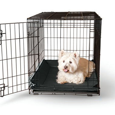 jcpenney.com | K&H Manufacturing Llc Crate Pad