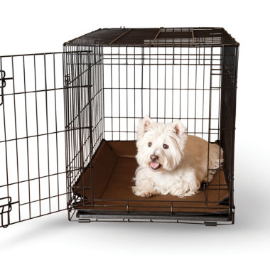 jcpenney.com | K & H Manufacturing Odor-Control Crate Pad